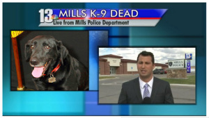 Officer Zachary Miller left the K9 Nyx in his patrol car for more than six hours parked outside the police department, according to an investigator's affidavit, even though police dogs are allowed inside the station. The outside temperature had gone from 53 (when the car was parked) to 86 degrees, according to the affidavit. Nyx died.