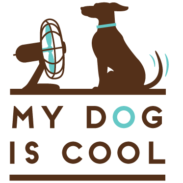 My Dog is Cool | How Hot is Too Hot?