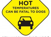 Hot Car Sign – Full Preview