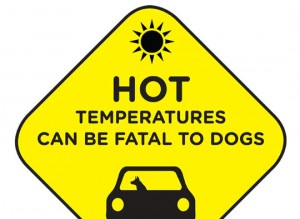 Hot Car Sign - Preview