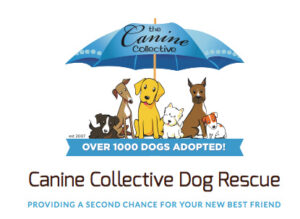 CanineCollective