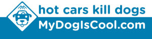 Hot Cars Kill Dogs bumper sticker