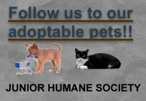 Junior Humane Society