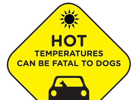 Image result for Dog in hot car clipart